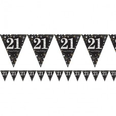 Age 21 Sparkling Celebration  Prismatic Foil Bunting - 4m