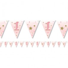 One Little Star Girl Paper Bunting 1st Birthday 11 Flags 3.7m