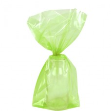 Lime Green Small Cello Party Bags - 24cm 1pc