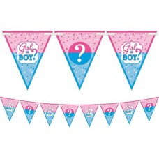 24 Pennants Gender Reveal Flag Banner 4,57м