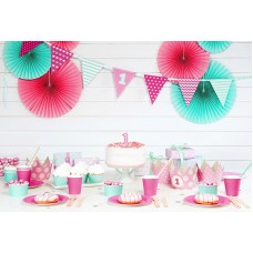 Pink and Mint - 1st Birthday